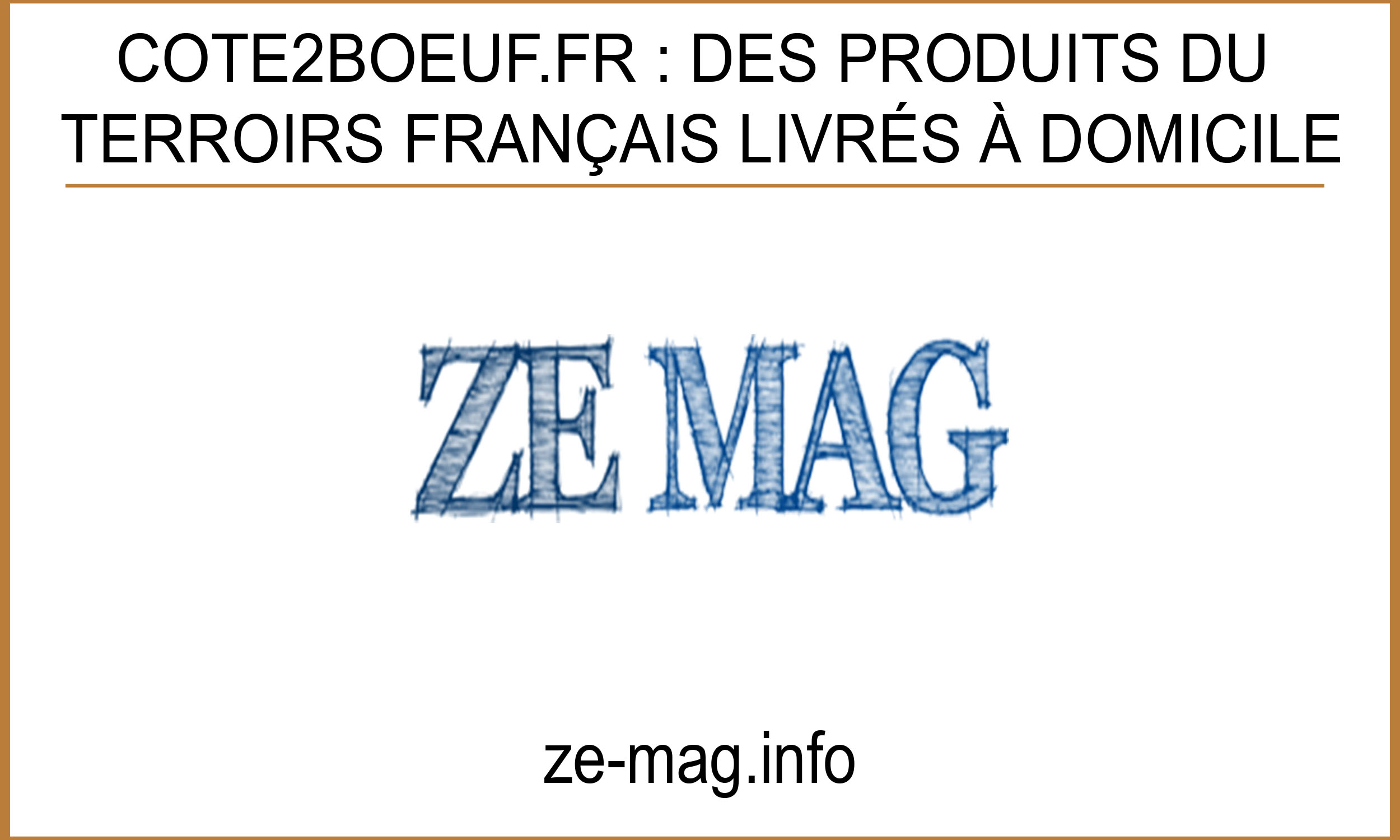 Article Ze Mag
