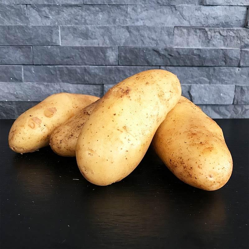 Pommes de terre spunta