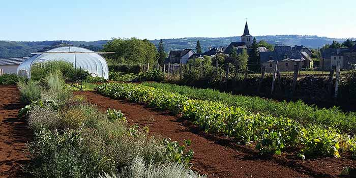 Cultures en biodynamie sur les hauteurs d'Espalion, à Alayrac, en Aveyron