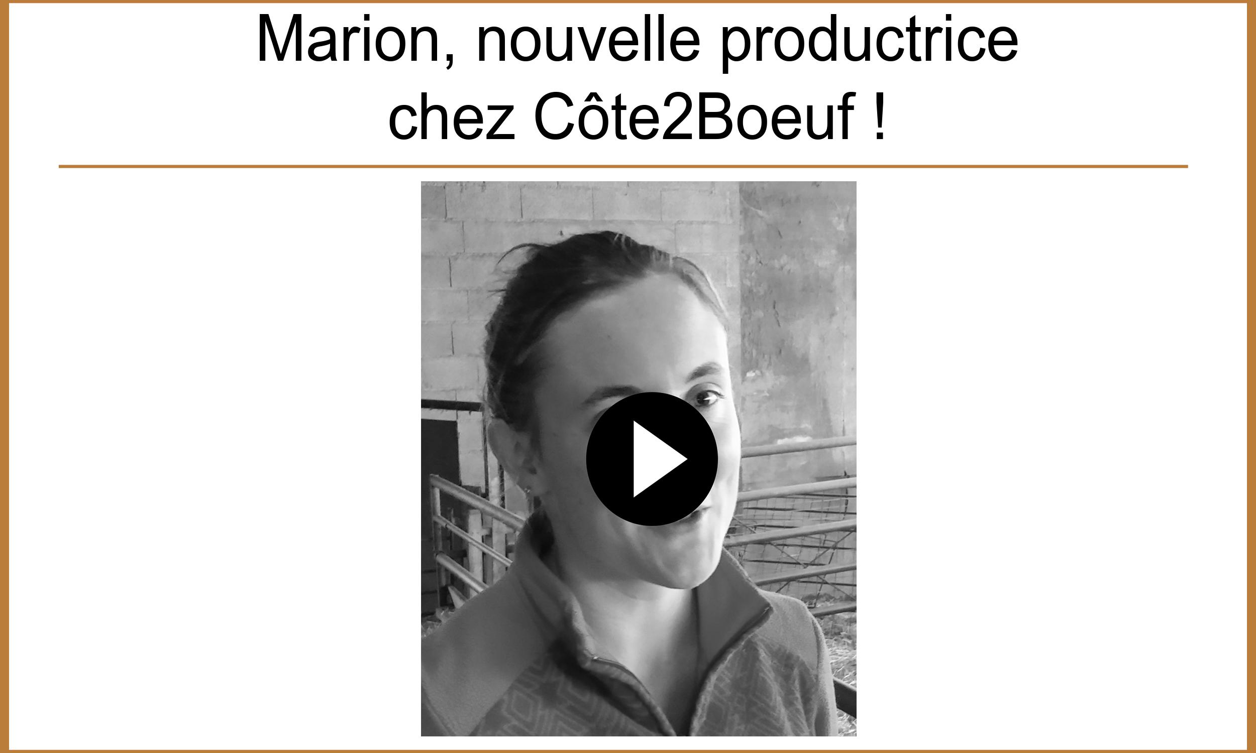 Présentation Marion