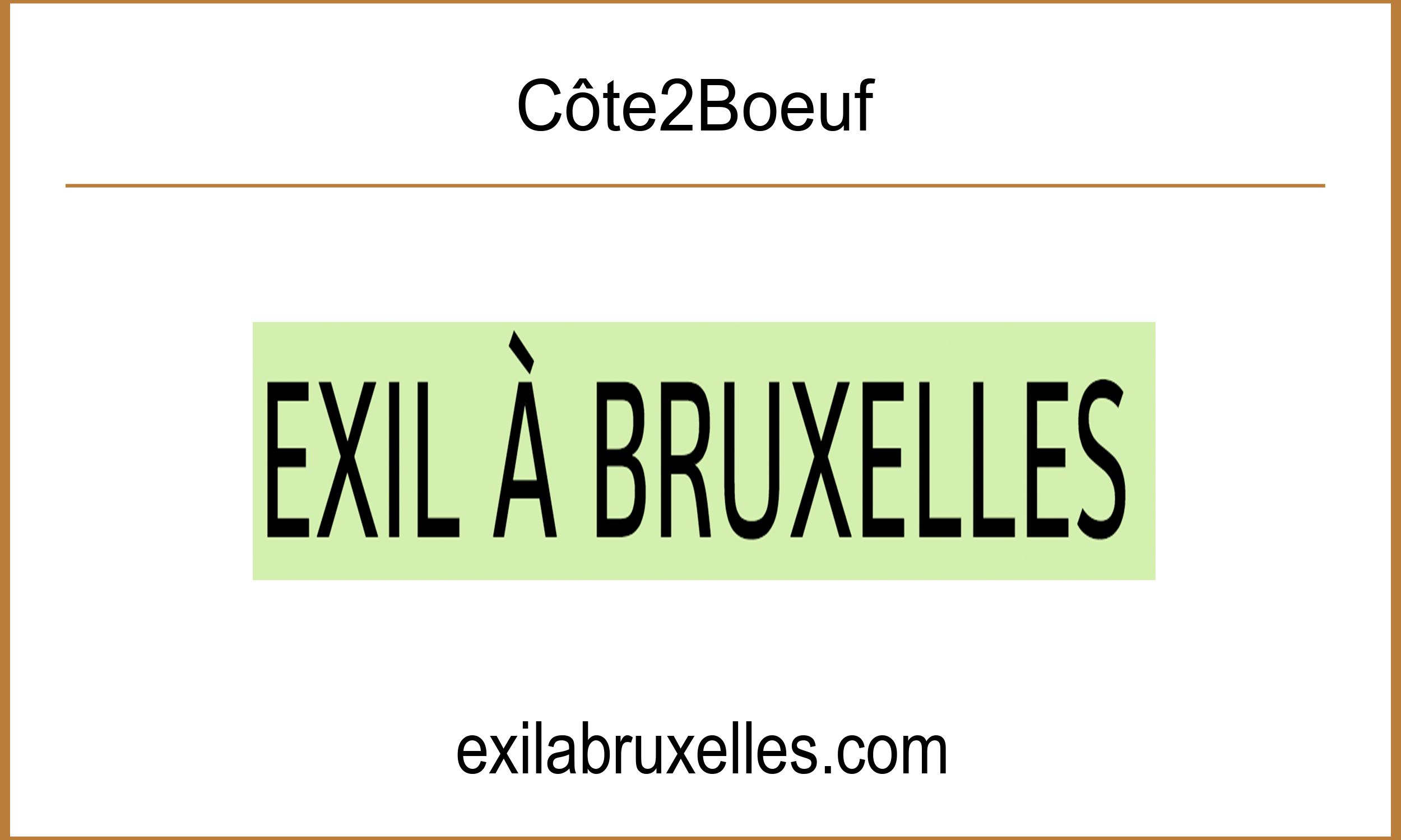 Article Exil à Bruxelles