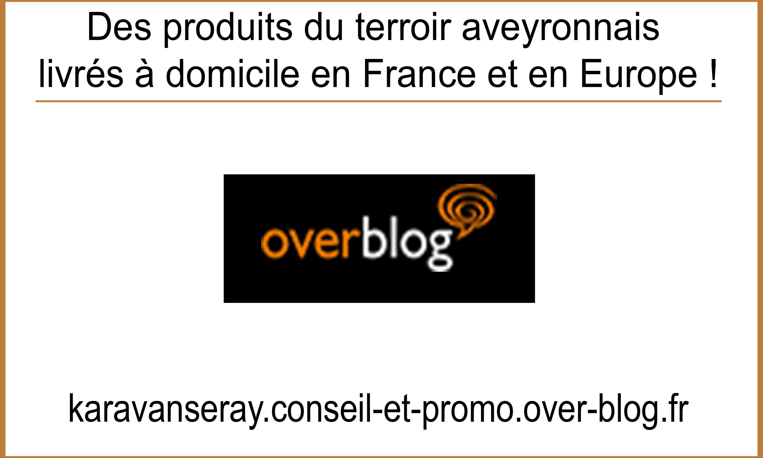 Artcile Overblog