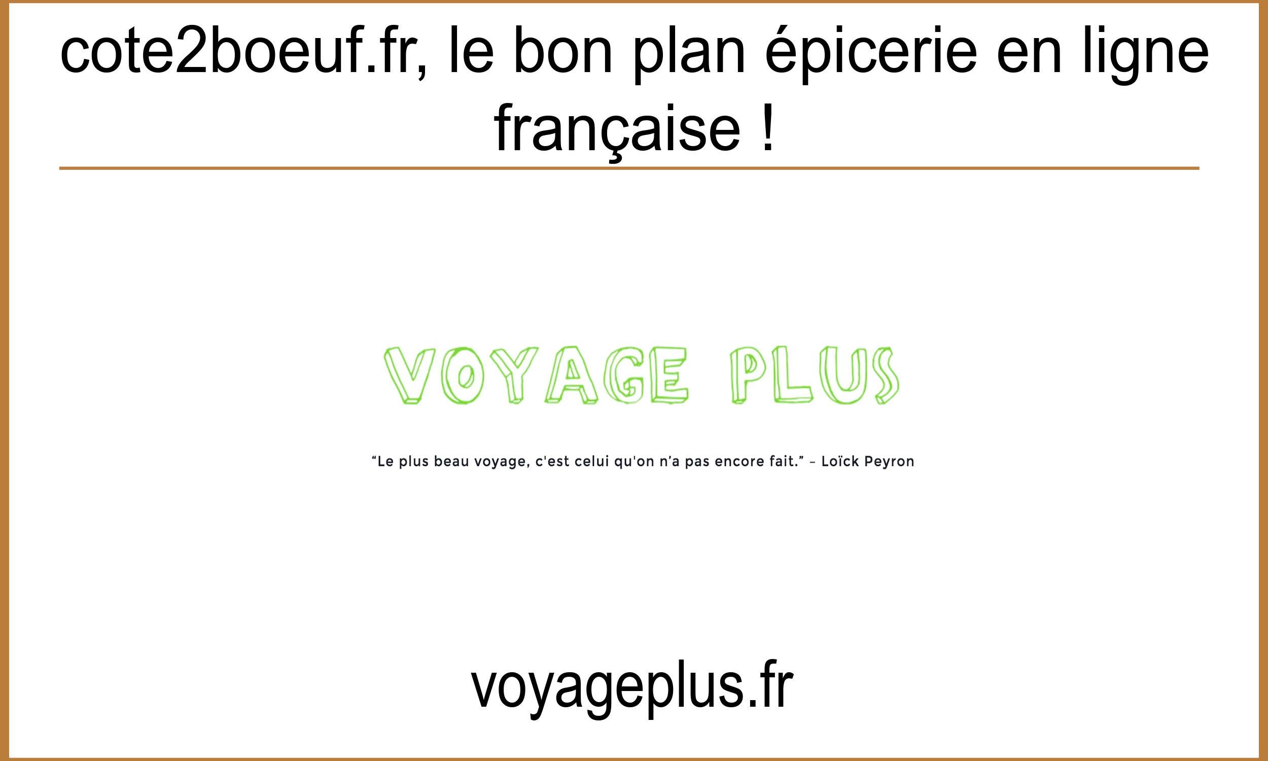 Article Voyage plus